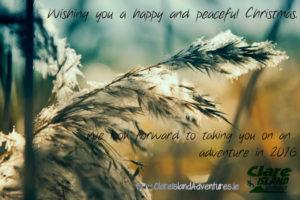 Happy Xmas 2015 from Clare Island Adventures